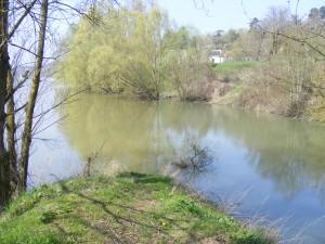 La Cisse à sa confluence avec la Loire sur la commune de Vouvray