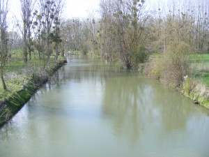 La Cisse à Vernou-sur-Brenne