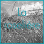 carre-roseliere