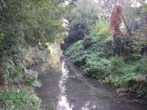 La Cisse Landaise à Landes-le-Gaulois