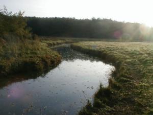La Petite Cisse à Mesland