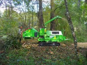 broyage des bois et création des chemins