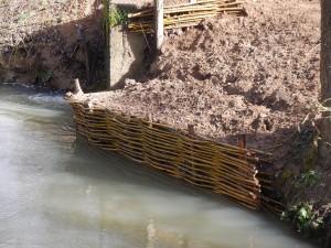 Protection de berge par tressage réalisé par les agents du syndicat