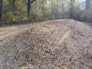 Copeaux issus du broyage des végétaux présents sur le site