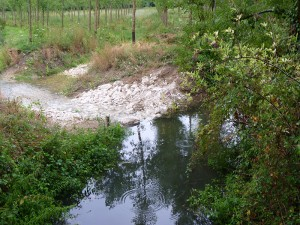 Restauration de la continuité écologique par ouverture de l'ancien bras du Mesland à Limeray