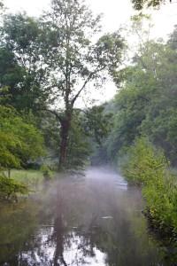 Chouzy - av beaumonts 2b - GODMER - La Cisse, chemin restauré avenue des beaumonts à Chouzy sur cisse