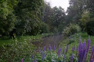 Chouzy - av beaumonts c - GODMER - La Cisse, chemin restauré avenue des Beaumonts CHOUZY