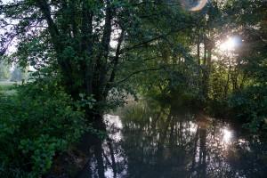 Coulanges - Pont Bourdon b - GODMER, amont du pont BOURDON, COULANGES